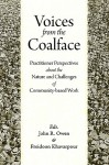 Voices from the Coalface: Practitioner Perspectives on the Challenges of Community-Based Work - John R. Owen, Freidoon Khavarpour