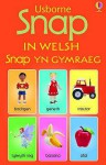 Snap Cards In Welsh (Snap Cards) - Jo Litchfield