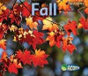 Fall (Seasons: Acorn) - Rebecca Rissman