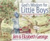 God's Wisdom for Little Boys: Character-Building Fun from Proverbs - Jim George, Elizabeth George