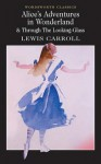 Alice's Adventures in Wonderland & Through The Looking-Glass - Lewis Carroll, Michael Irwin