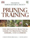 Rhs Pruning and Training - Christopher Brickell, David Joyce