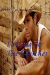Falling for the Rancher - Faith Loveright