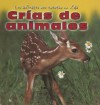 Crias de Animales = Baby Animals - Elisabeth Lambilly-bresson