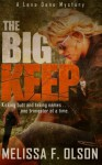 The Big Keep: A Lena Dane Mystery - Melissa F. Olson