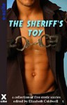 The Sheriff's Toy: A Collection of Five Erotic Stories - Jordan Alleyo, Veronica Gosford, Queenie Black, Valerie Grey, Zombie Ferguson, Elizabeth Coldwell