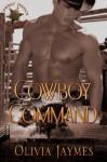Cowboy Command (Cowboy Justice Association) - Olivia Jaymes