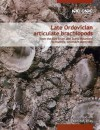 Late Ordovician Articulate Brachiopods: From the Red River and Stony Mountain Formations, Southern Manitoba - Jisuo Jin