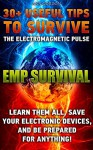 EMP SURVIVAL 30+ UsefuL Tips to Survive The Electromagnetic Pulse. Learn Them All, Save Your Electronic Devices, And Be Prepared For Anything!: ( How to ... Novels, How to survive anything Book 1) - Ann Gordon