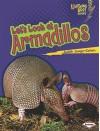 Let's Look at Armadillos - Judith Jango-Cohen
