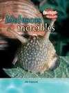 Moluscos increibles (Criaturas Increibles) - John Townsend