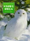 Snowy Owls - Wendy Pfeffer