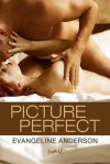 Picture Perfect by Evangeline Anderson (31-Aug-2014) Paperback - Evangeline Anderson