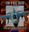 F16 Falcon - Lynn M. Stone