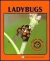 Ladybugs - Sylvia A. Johnson