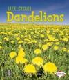 Dandelions - Robin Nelson