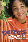 Carrots Grow under the Ground - Taylor Jones, Anne Faundez