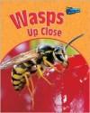 Wasps Up Close - Greg Pyers