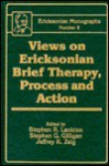 Views on Ericksonian Brief Therapy, Process and Action - Stephen Lankton