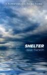 Shelter: A Supernatural Short Story - Dave Franklin