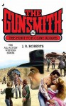 The Hunt for Clint Adams (The Gunsmith, #343) - J.R. Roberts