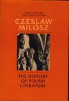 The History Of Polish Literature - Czesław Miłosz