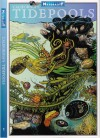 California's Tidepools (Weekend Naturalist Nature Guide Foldout #1) - Dawn Navarro Ericson, Dan Richards