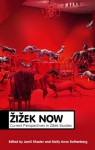 Zizek Now: Current Perspectives in Zizek Studies (Theory Now) - Jamil Khader, Molly Anne Rothenberg