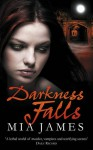 Darkness Falls (Ravenwood, #2) - Mia James