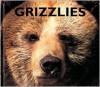 Grizzlies - Mary Ann McDonald