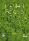 Planted Forests: Uses, Impacts and Sustainability - Julian Evans, James B. Carle, J.B. Ball, Alberto Del Lungo, D. A. Neilson