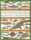 The Illustrated Guide to Freshwater Fish & River Creatures: A visual guide to aquatic life featuring more than 450 fabulous species accompanied by 500 ... photographs and distribution maps - Daniel Gilpin