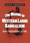 The Making of Western Labor Radicalism: Denver's Organized Workers, 1878-1905 - David Brundage