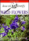 How to Identify Wild Flowers - Christopher Grey-Wilson, Lisa Alderson