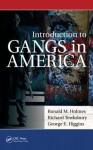 Introduction to Gangs in America - Ronald M. Holmes, Richard Tewksbury, George V. Higgins