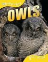 Owls (Qed Animal Lives) - Sally Morgan