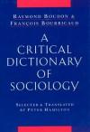 A Critical Dictionary of Sociology - Raymond Boudon, Francois Bourricaud, Peter Hamilton