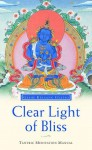 Clear Light of Bliss: The Practice of Mahamudra in Vajrayana Buddhism - Kelsang Gyatso
