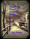 Treasury Of Bizarre Christmas Stories - Fiza Pathan