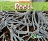 Roots - Charlotte Guillain