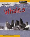 A Pod of Whales - Richard Spilsbury, Louise Spilsbury