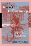 A Fly in the Soup: Memoirs - Charles Simic