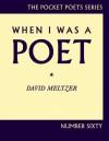 When I Was a Poet - David Meltzer