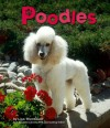 Poodles - Lisa Trumbauer
