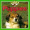 Puppies - Kate Petty