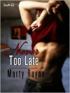 Never Too Late - Marty Rayne