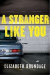A Stranger Like You (MP3 Book) - Elizabeth Brundage, Ellen Archer, Robert Petkoff