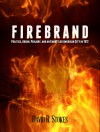 Firebrand: Politics, Arson, Perjury, and an Embattled American City in 1912 - David R. Stokes