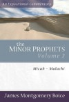 The Minor Prophets: Micah-Malachi Volume 2 (Expositional Commentary) - James Montgomery Boice