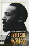 Divided Soul - David Ritz